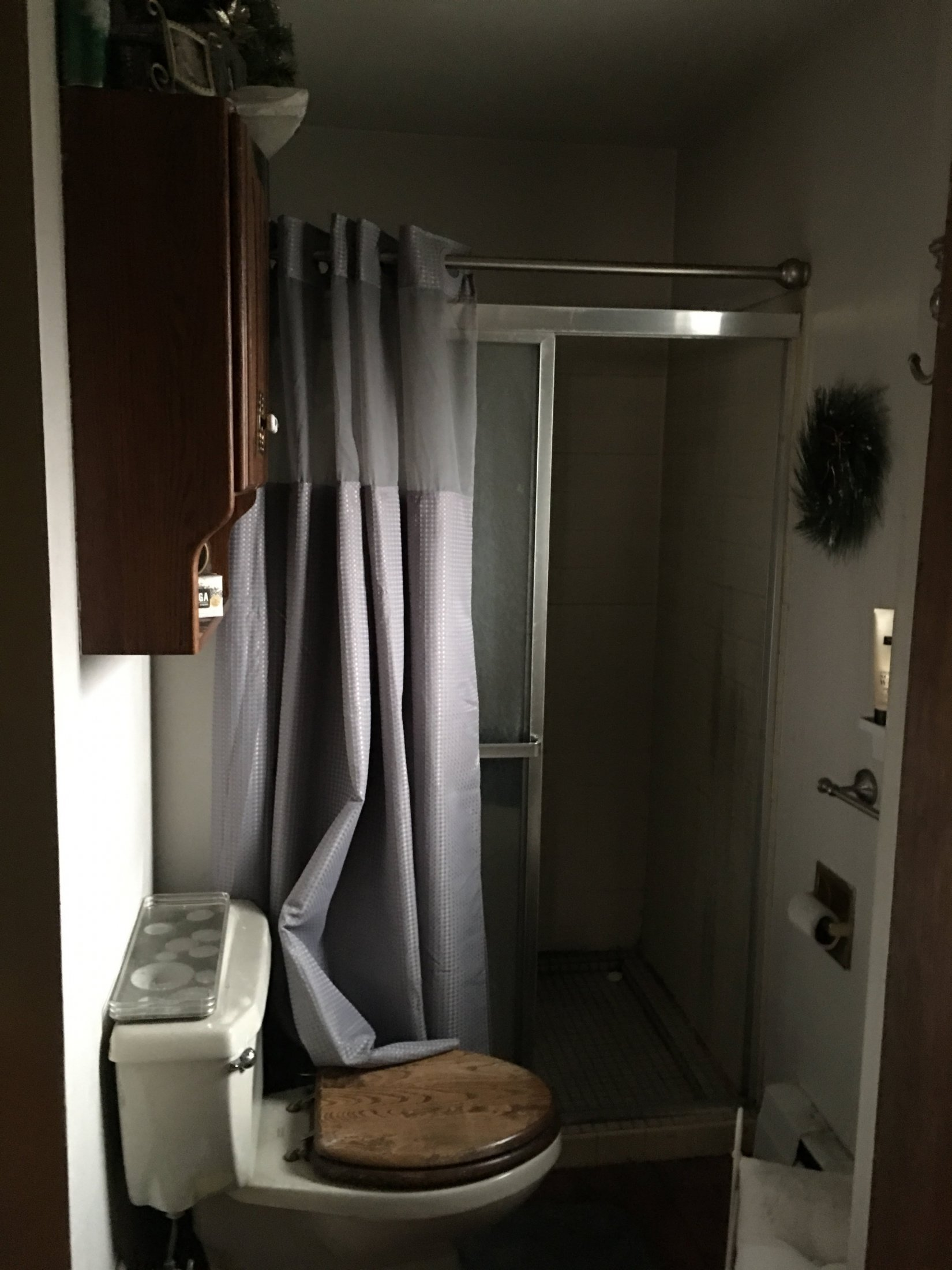 Before Master Bathroom 3